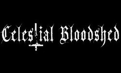 Celestial Bloodshed