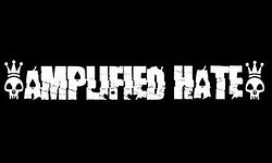 Amplified Hate