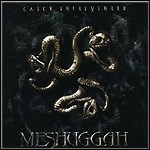 Meshuggah - Catch Thirtythree - 9 Punkte