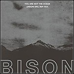 Bison - You Are Not The Ocean You Are The Patient